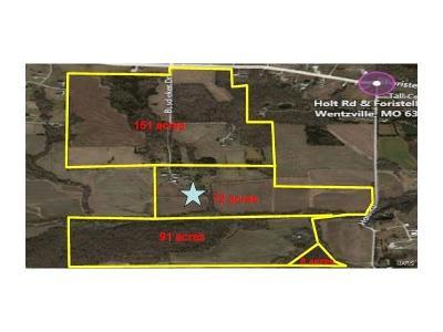 Wentzville Farm For Sale: Holt Road