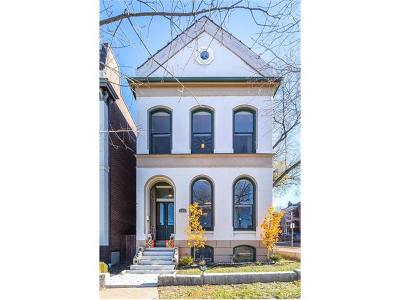 St Louis Single Family Home For Sale: 1024 Mississippi Avenue