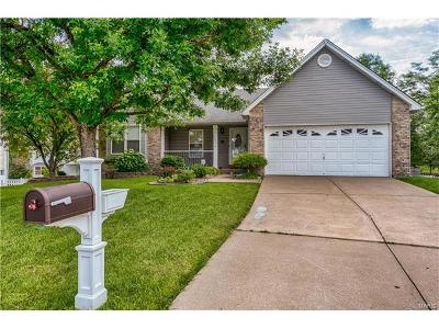 St Charles, Weldon Spring Single Family Home For Sale: 2622 Wykeham Drive