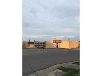 Scott County, Cape Girardeau County, Bollinger County, Perry County Commercial For Sale: 411 Jefferson Avenue