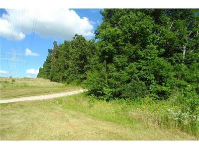 Park Hills, Desloge Farm For Sale: Old Bismarck Road