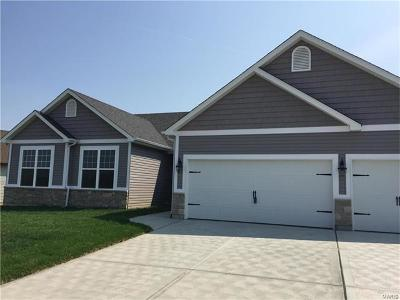 Wentzville Single Family Home For Sale: 232 Lonepine