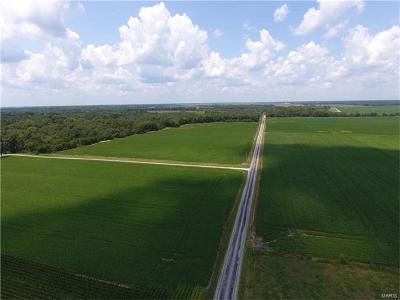 Farm For Sale: Wilhoit Airport Road