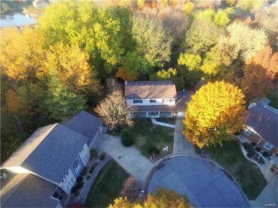 Glen Carbon Single Family Home For Sale: 53 Rushmore