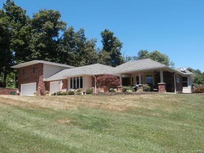 New London MO Single Family Home For Sale: $365,000