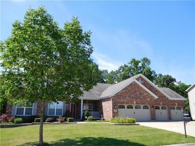 O Fallon Single Family Home For Sale: 918 Haven Wood