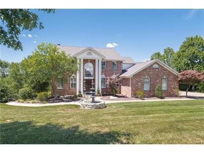 Fenton Single Family Home For Sale: 810 Villa Gran Way