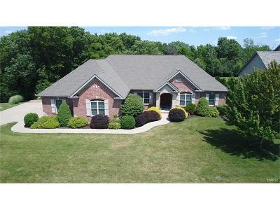 Washington Single Family Home For Sale: 980 Prairie View Ct