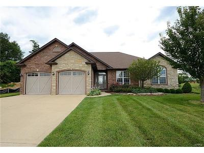 Caseyville Single Family Home For Sale: 1249 Pebble Beach Drive