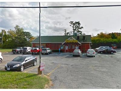 Franklin County, Gasconade County, Jefferson County, Lincoln County, Montgomery County, Pike County, St Charles County, St Louis City County, St Louis County, Warren County Commercial For Sale: 3500 North Lindbergh Boulevard
