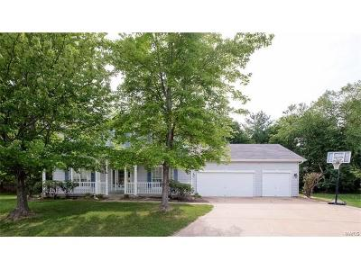 Ellisville Single Family Home For Sale: 16101 Woodsview Manor Court