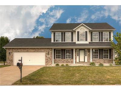Fairview Heights Single Family Home For Sale: 5401 Wake Forest Drive