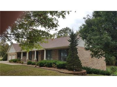 Troy Single Family Home For Sale: 160 Bluffview Drive