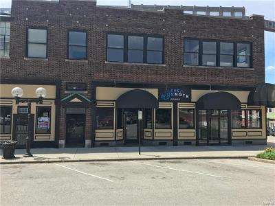Alton IL Commercial For Sale: $485,000