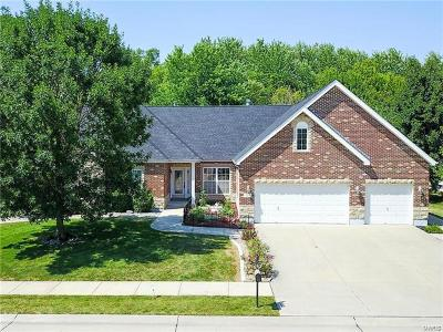 Belleville Single Family Home For Sale: 2253 Jack Nicklaus Drive