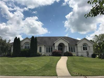 Scott County, Cape Girardeau County, Bollinger County, Perry County Single Family Home For Sale: 3429 Spring Lake Trail