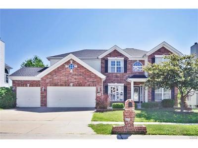 Florissant Single Family Home For Sale: 15450 Jost Estates Drive