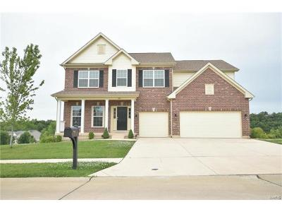 Wentzville Single Family Home For Sale: 301 Wilmer Valley Drive