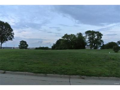 Scott County, Cape Girardeau County, Bollinger County, Perry County Commercial For Sale: 1405 Old St. Mary's Road