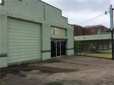 Scott County, Cape Girardeau County, Bollinger County, Perry County Commercial For Sale: 16 North Fredrerick