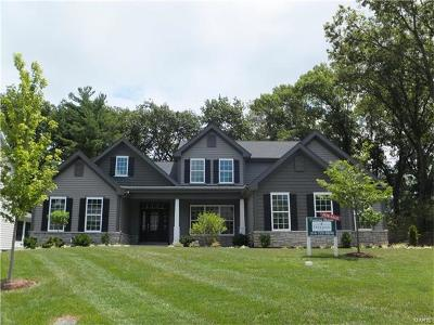 Kirkwood Single Family Home For Sale: 1524 Breezeridge