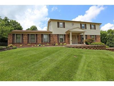 Creve Coeur Single Family Home For Sale: 387 Royal Valley Drive