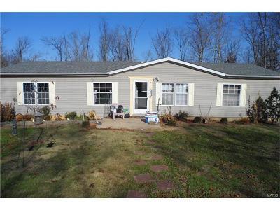 Farmington Single Family Home For Sale: 600 Casey
