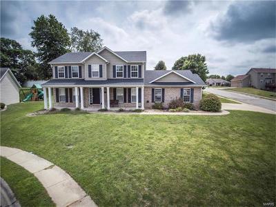 Collinsville Single Family Home For Sale: 2 Delta Drive