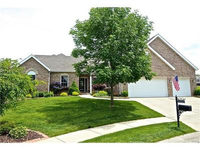 Caseyville Single Family Home For Sale: 104 Antler Creek Court