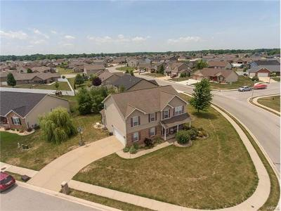 Mascoutah Single Family Home For Sale: 929 Indian Prairie