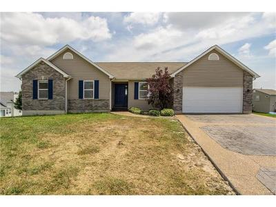 Troy Single Family Home For Sale: 12 Glen Dale Court