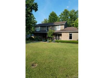 Collinsville Single Family Home For Sale: 1874 Raintree Trail