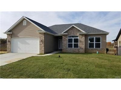 Caseyville New Construction For Sale: 7971 Sonora Ridge