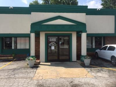 Fairview Heights Commercial For Sale: 10716 Lincoln Trail
