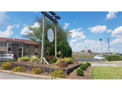 St Louis County Condo/Townhouse Contingent No Kickout: 10090 Sakura Drive #26