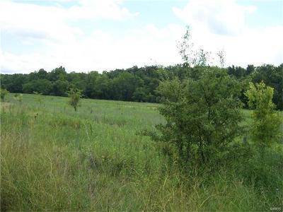 De Soto Farm For Sale: 2383 Stonehouse Road