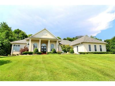 Scott County, Cape Girardeau County, Bollinger County, Perry County Single Family Home For Sale: 2540 Kenneth Drive