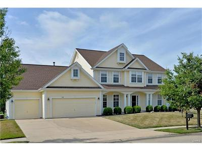 Lake St Louis Single Family Home For Sale: 818 Stonewood Bend Drive