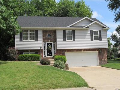 Glen Carbon Single Family Home For Sale: 14 Shaderest Court