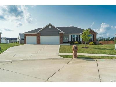 O Fallon Single Family Home For Sale: 709 Santa Anna Court