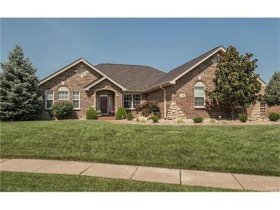 Wentzville Single Family Home For Sale: 3215 Bear Tracks