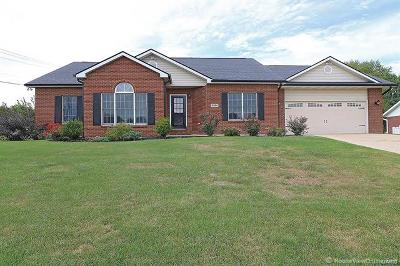 Scott County, Cape Girardeau County, Bollinger County, Perry County Single Family Home For Sale: 2501 Saddlegate