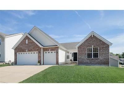 Eureka Single Family Home For Sale: 982 Wellington Woods Ct