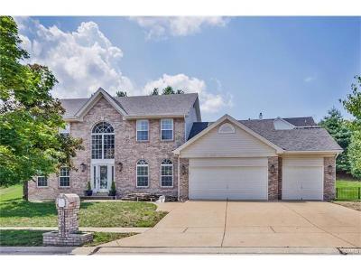 Ellisville Single Family Home For Sale: 16264 Autumn View Terrace Drive