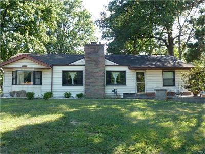 Bridgeton Single Family Home For Sale: 11402 Prospect Avenue