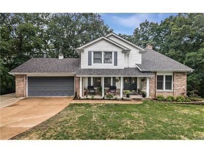 Ellisville Single Family Home For Sale: 226 Clayton Trails Drive