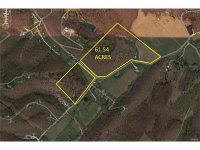Jefferson County, Madison County, St Francois County Farm For Sale: 999 Diehl Road