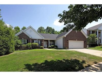 Chesterfield Single Family Home For Sale: 1185 Nooning Tree Drive