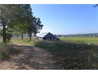 Scott County, Cape Girardeau County, Bollinger County, Perry County Farm For Sale: 1 Mm Hwy