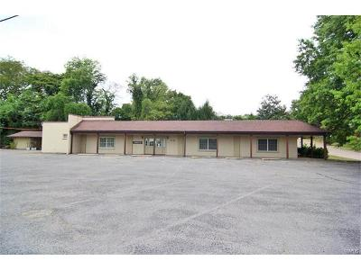 Scott County, Cape Girardeau County, Bollinger County, Perry County Commercial For Sale: 2749 Thomas Drive